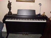 Roland RP101 digital piano.