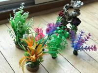 Fish tank plants and ornament