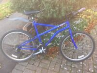 Apollo Men's mountain bike blue £20