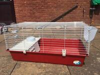 Indoor guinea pig/dwarf rabbit hutch