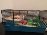Robo hamsters