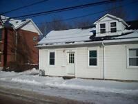 133 Colborne Street - 4 Bedroom Townhome for Rent