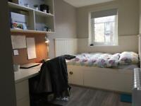 Room to Rent (STUDENT)