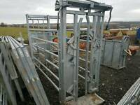 Portable cattle crush with yolk rear sliding gate and side panels