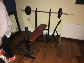 Bench an weight for sale