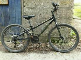 "Dawes Zombie 24"" mountain bike"