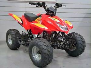 BRAND NEW ZUMA BEAGLE 110 QUAD BIKE ASSEMBLED READY TO GO Russell Vale Wollongong Area Preview