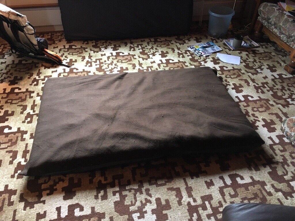 2 LARGE DOG BEDS