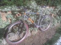 Retro Orange P7 mountain bike UPDATE