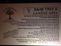S.M Tree and Landscaping