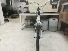 Custom built BMX Cruiser. Built to look awesome. so if you just want to look cool this is for you.