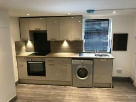 Luxury Apartment inc. ALL BILLS ONLY £475 month!!!