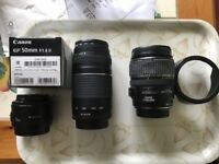 Lenses for Canon DSLR cameras. 50mm 1.8, 75-300 and 17-85mm IS