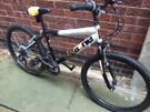 Boys Concept jnr Rawbone mountain bike