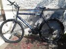 TOWNSEND TEAM PRO BIKE FOR SALE