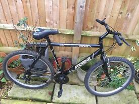"Probike Escape, 22"" Frame. Serviced, Free Lights/Lock/Delivery"