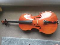 Cello full sized