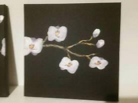 3 paintings pack
