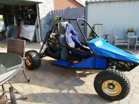 Rally Racing Buggy *reduced*