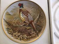 Chinese Ring-necked Pheasant - Gamebirds Of The World - FRANKLIN MINT