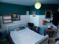 Double room available for single occupancy available.
