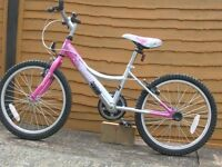 Pink orchid childs bike