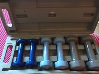 Pro-fitness Dumbbells and Carrying Case