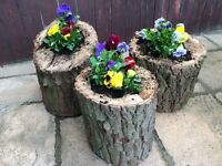 Free Tree Removal Fencing Sheds Flagging Planters Bird Boxes / Garden Tidy / Rubbish Ckearance /