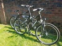 His and her Raleigh mountain bikes like new