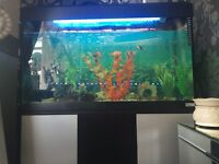 about 4 foot fishtank with stand