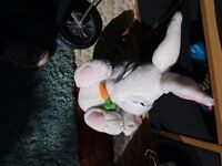 Cute interactive bunny with carrott