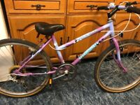 Raleigh Cassis 24 inch wheels