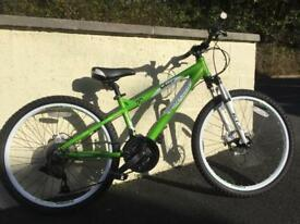 Carrera Blast 24 inch mountain bike