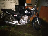 Breaking a LEXMOTO DFE 125-8A STREET for parts