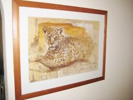Lovely Good Sized Art Print Of A Lounging Leopard.