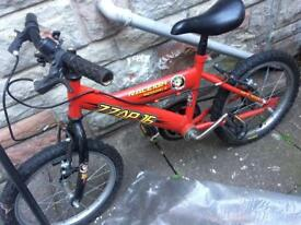 Red ZZAP 16 bike good condition