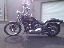 Harley Davidson softtail springer