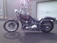 Harley Davidson softtail springer