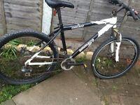 Bike -Ammaco adult mountain bike