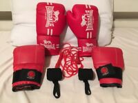 Boxing glove set