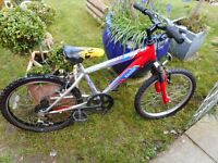 boys raleigh red and silver 20 inch wheel bike