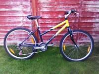 Woman's scott bike