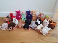 20 Ty Beanie Babies including Princess Bear