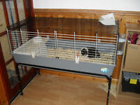 CAGE & STAND WITH 2 GUINEA PIGS