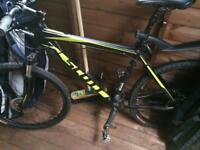 Scott Mountain Bike - Large