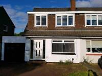 Large 3 bedroom house in great location.
