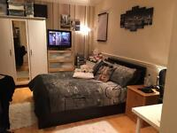 Big beautiful double room in Wimbledon/Raynes Park (London) available now!