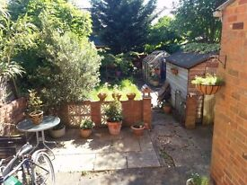 Spacious Double Room, Very Close to Town Centre