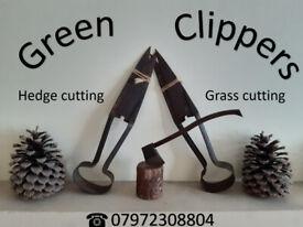 Grass cutting and hedge cutting service