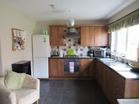 2 double bedrooms in 4 bedroom professional house share - North Belfast - £260 each (bills included)